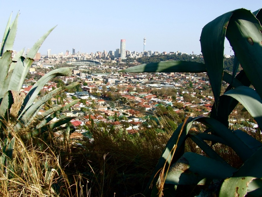 Johannesburg's CBD and eastern suburbs viewed from the top of Langeman's Kop