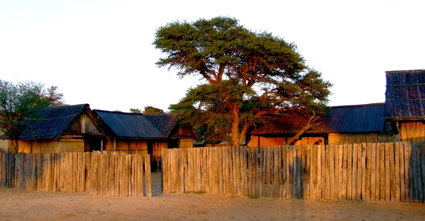 kalahari bush camp in early morning light