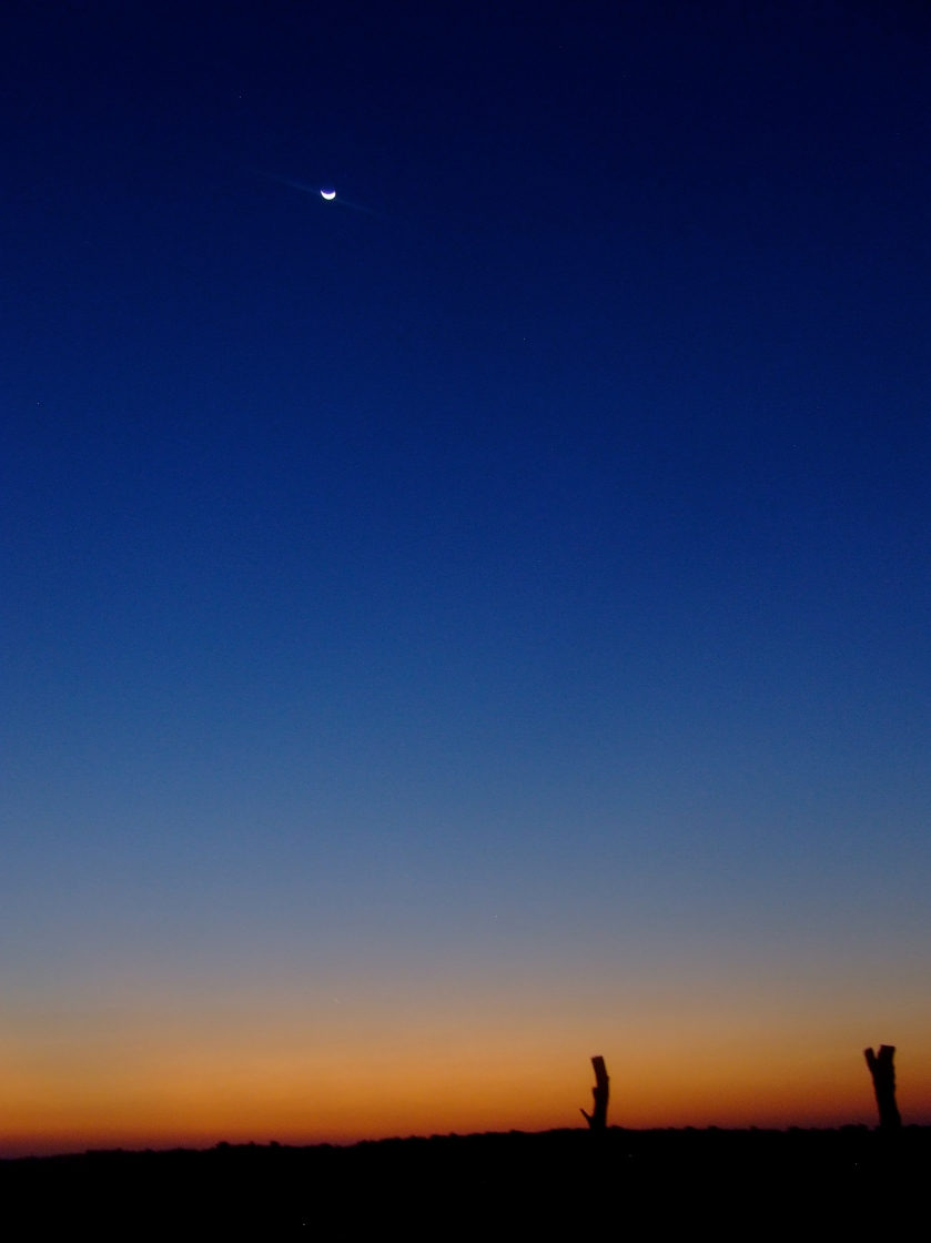 kalahari sunset with moon