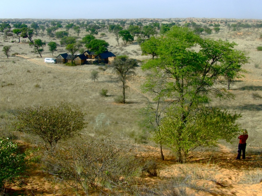 a bush camp in the kalahari