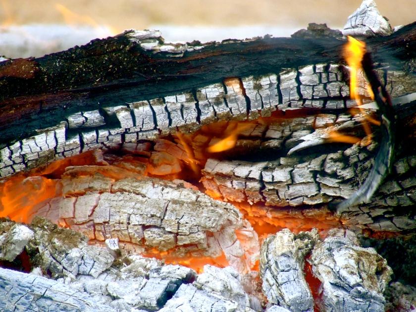 kalahari campfire
