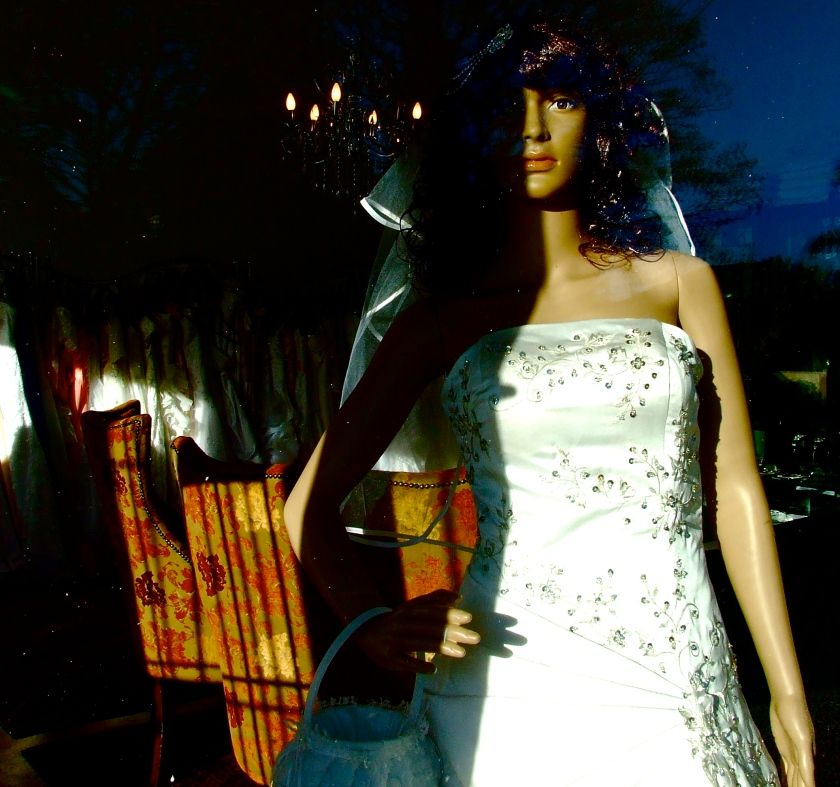 wedding mannequin in shop window in melville johannesburg