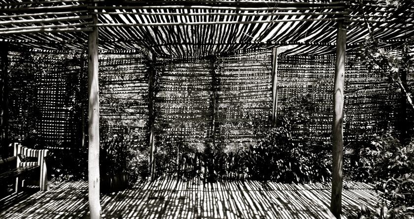 walter sizulu botanical gardens