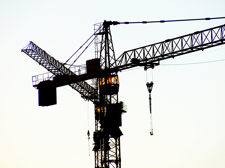 two-cranes-resized-001