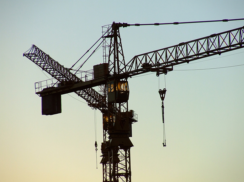two-cranes-resized-002